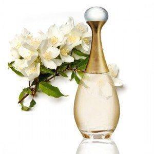 Champú de nuestro perfume favorito