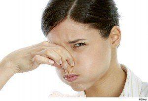 Cómo eliminar el olor a comida